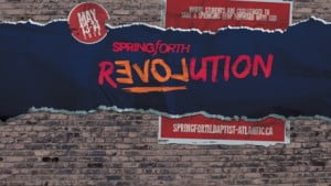 SF16 Revolution Web